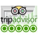 ttripadvisor-logo2
